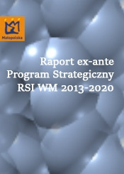 Raport ex-ante - Program Strategiczny RSI WM 2013-2020