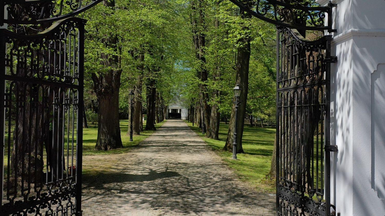 Arboretum wLusławicach